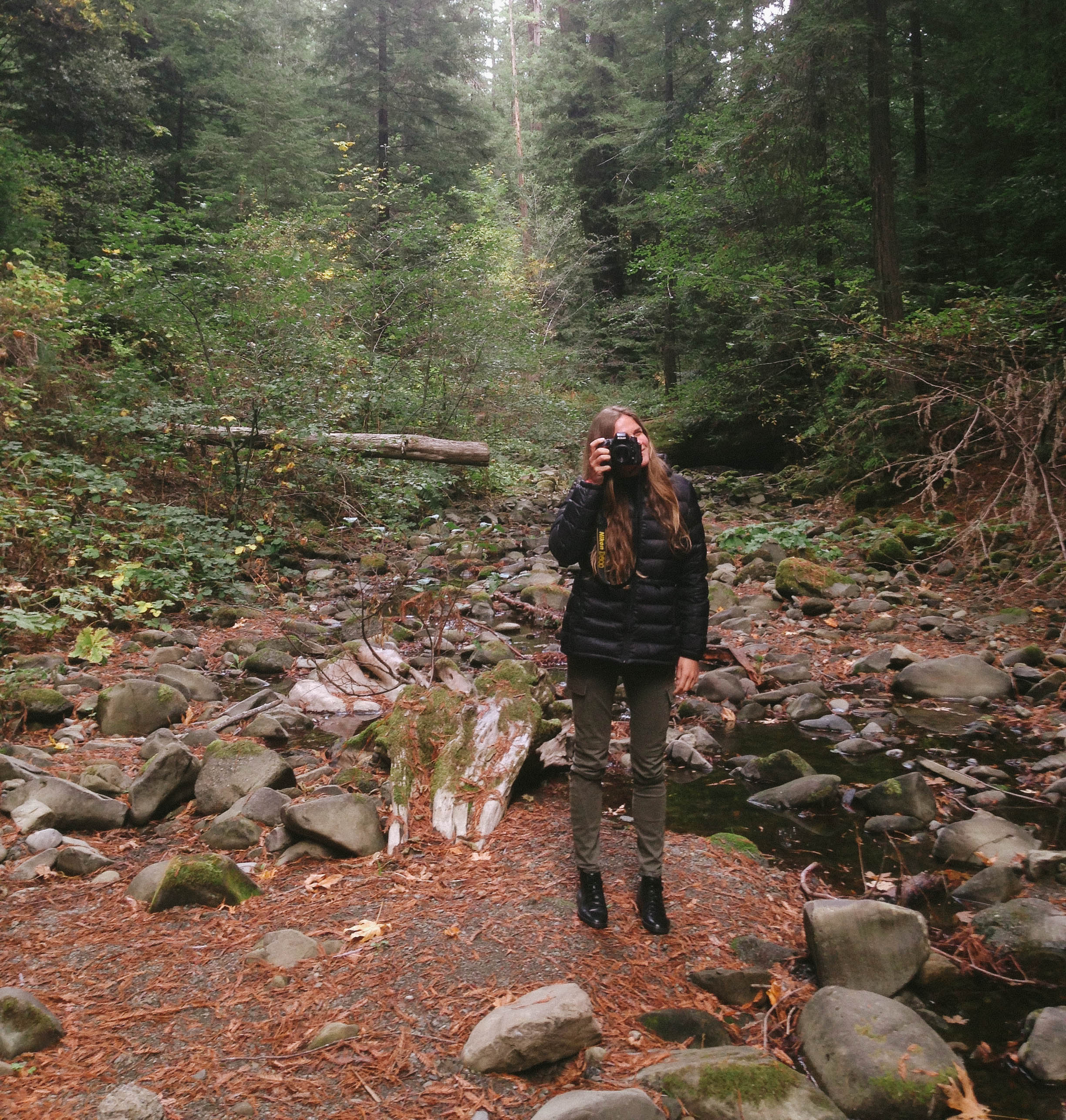 Jess documenting our adventures through the redwoods.