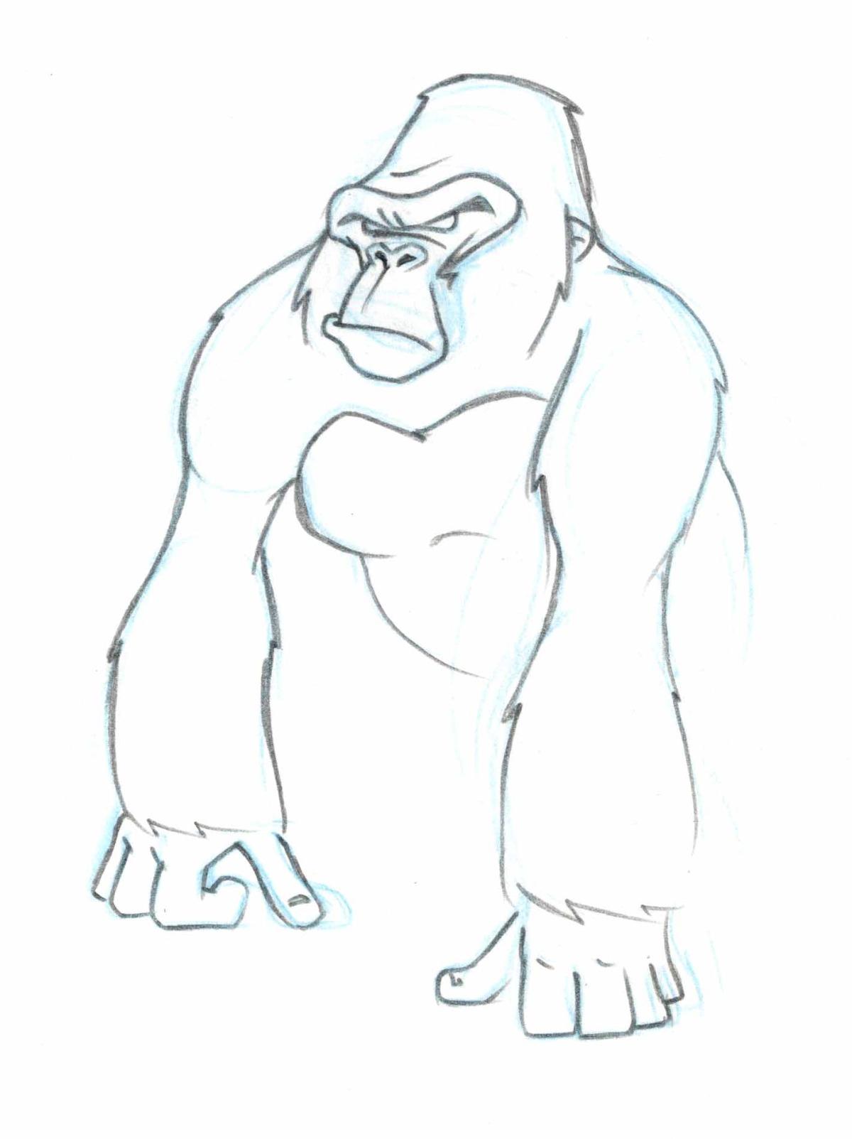 antcreations_gorillatubssketches10.jpg