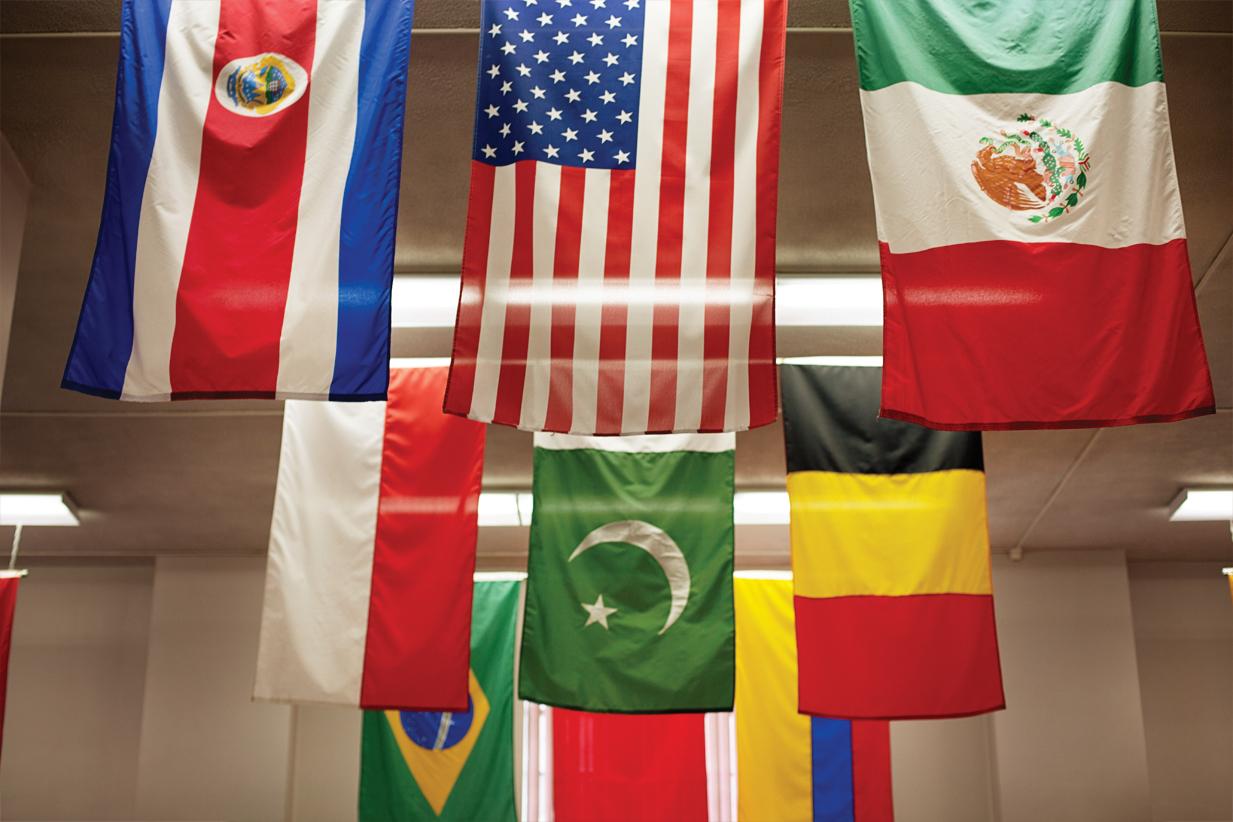 AIC001-MOSAIC-Flags.jpg