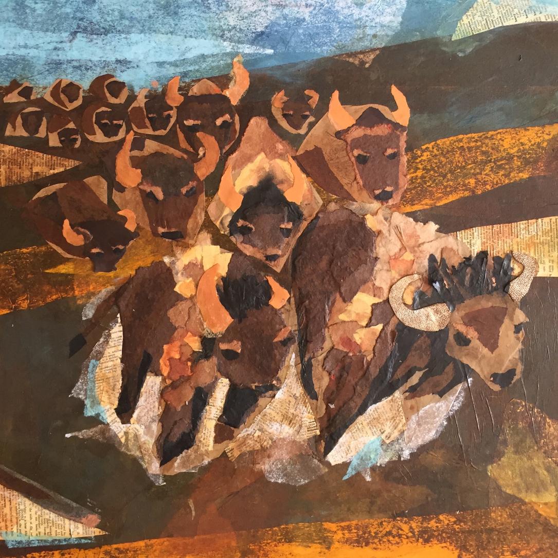 final buffalo herd.jpg