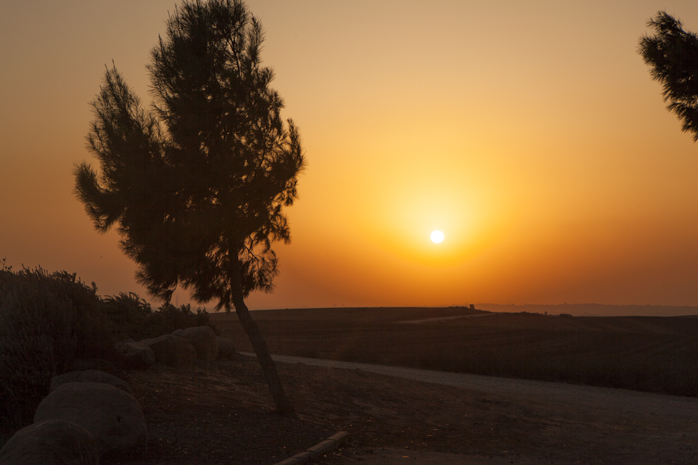 1211_ISRAEL_01609.jpg