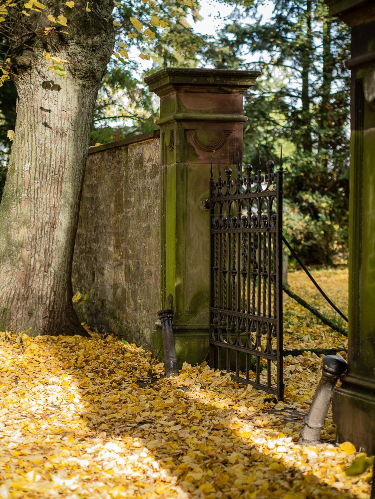 Herbst  - 05.jpg