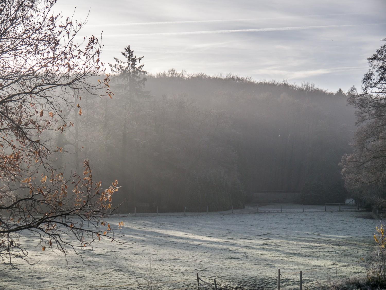Frost im Nettetal  - 01.jpg