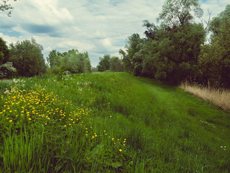 Rhein  - 06.jpg