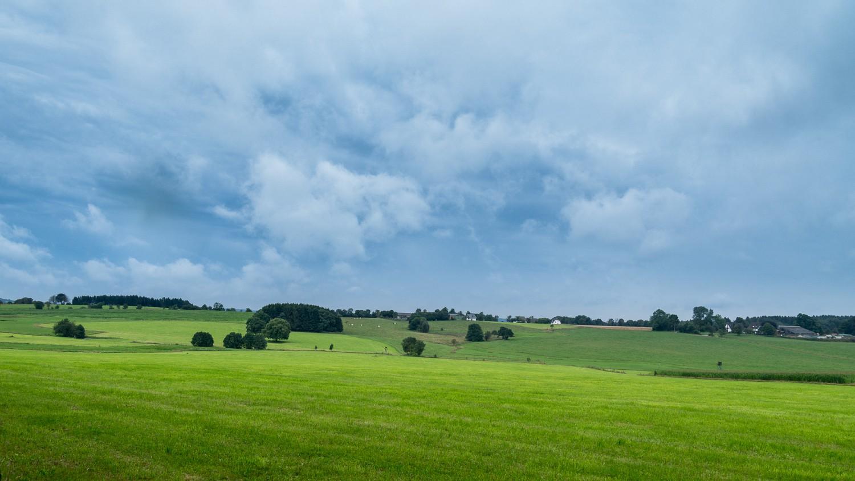 Sauerland - Landschaft - Wiese - Farbe
