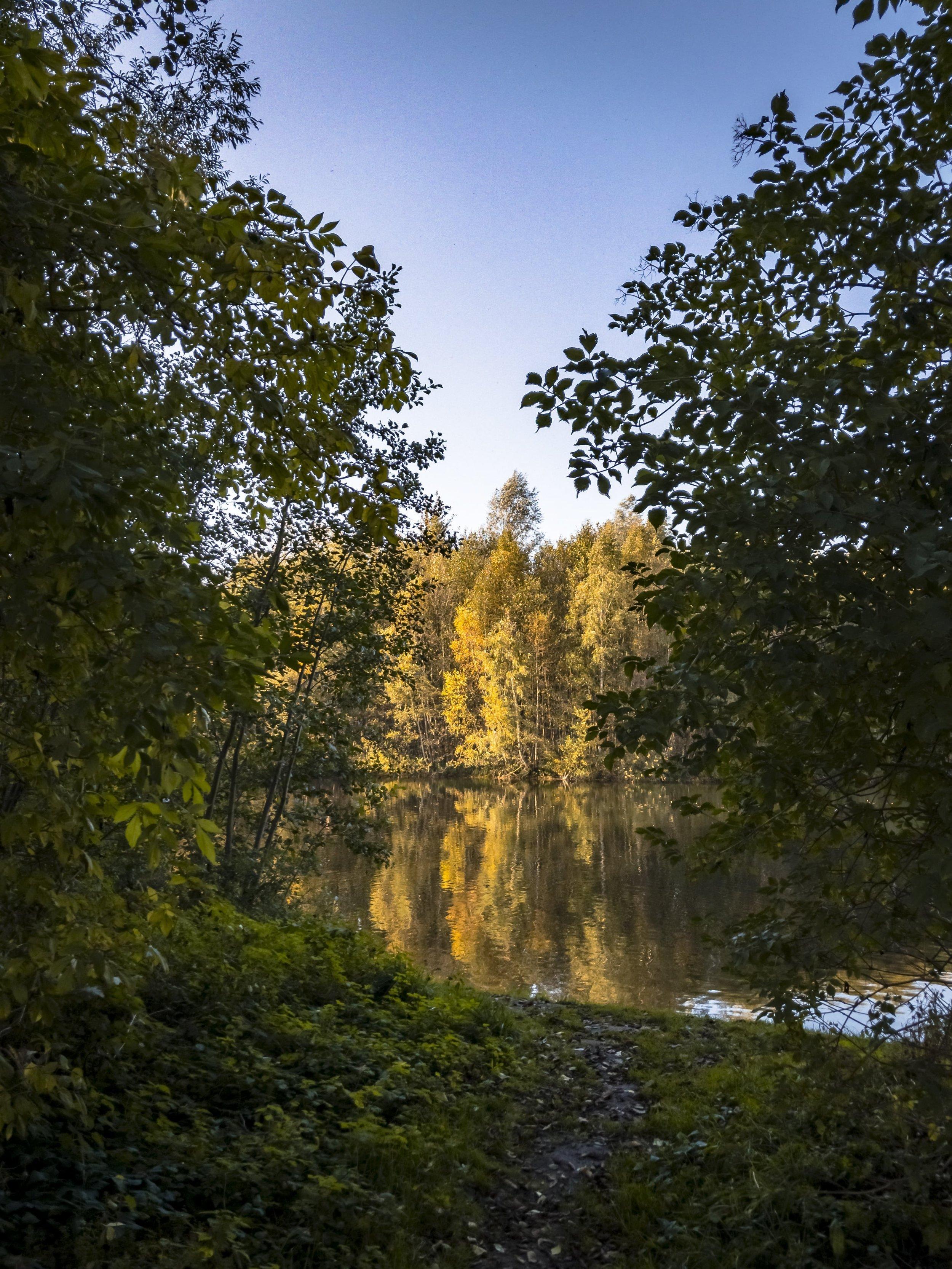 APC_0387-hdr - Herbst ShotoniPhone Autumn Blätter Leaves Sun Sonne Light Threes Licht Bäume Baum Stadt Osnabrück.jpg