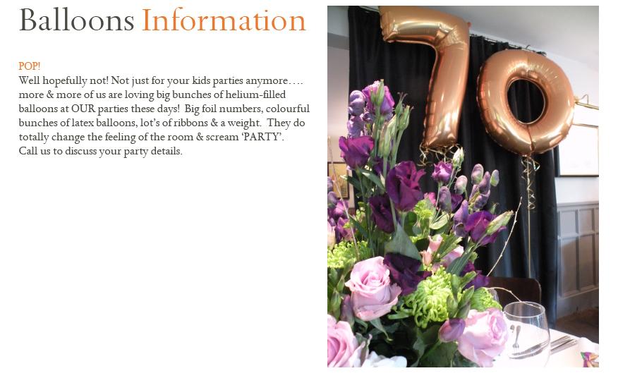 BALLOONS_Information002.jpg