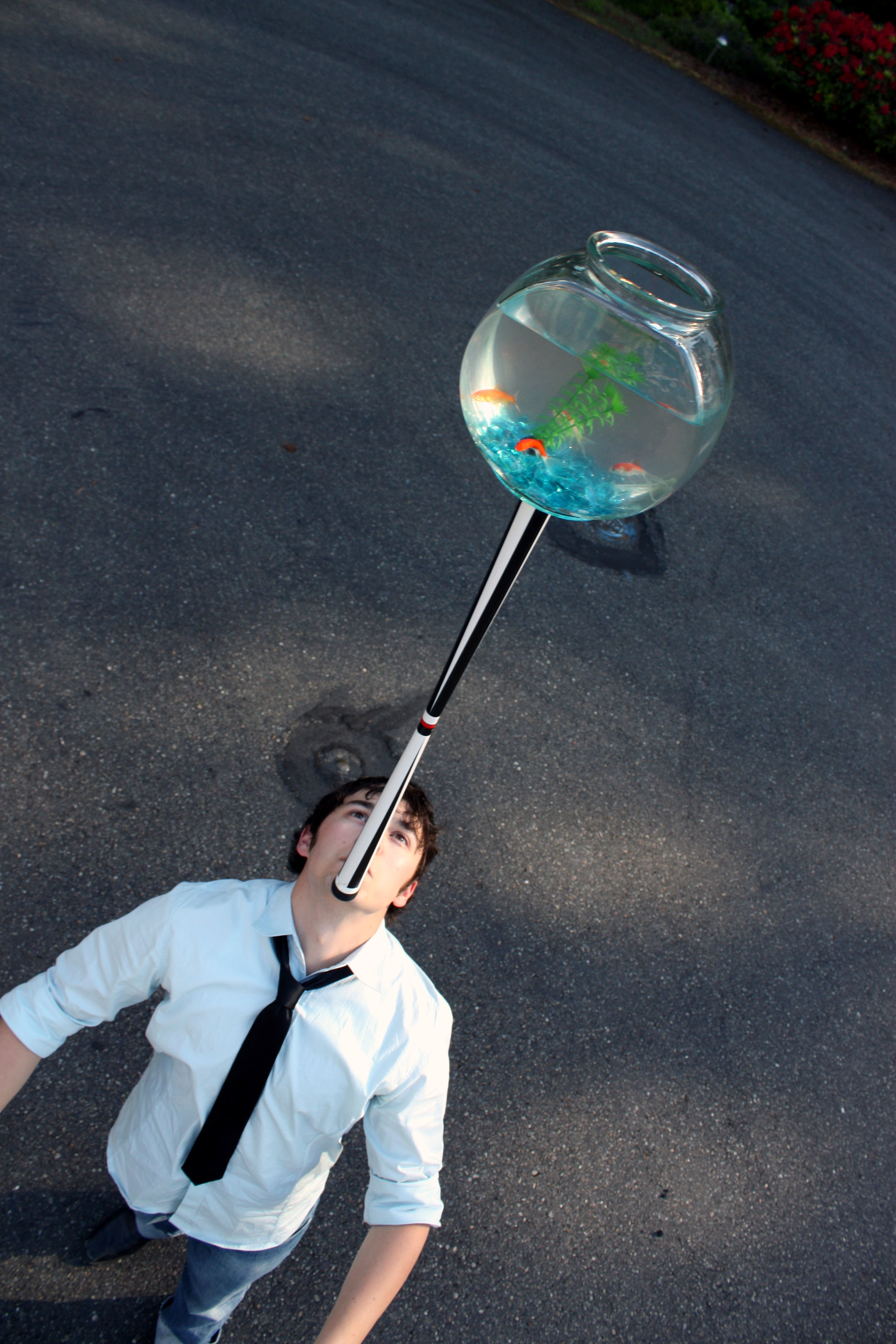 Gk Fishbowl 1.jpg