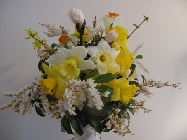 Early spring bouquet of daffodils, andromeda and magnolia.