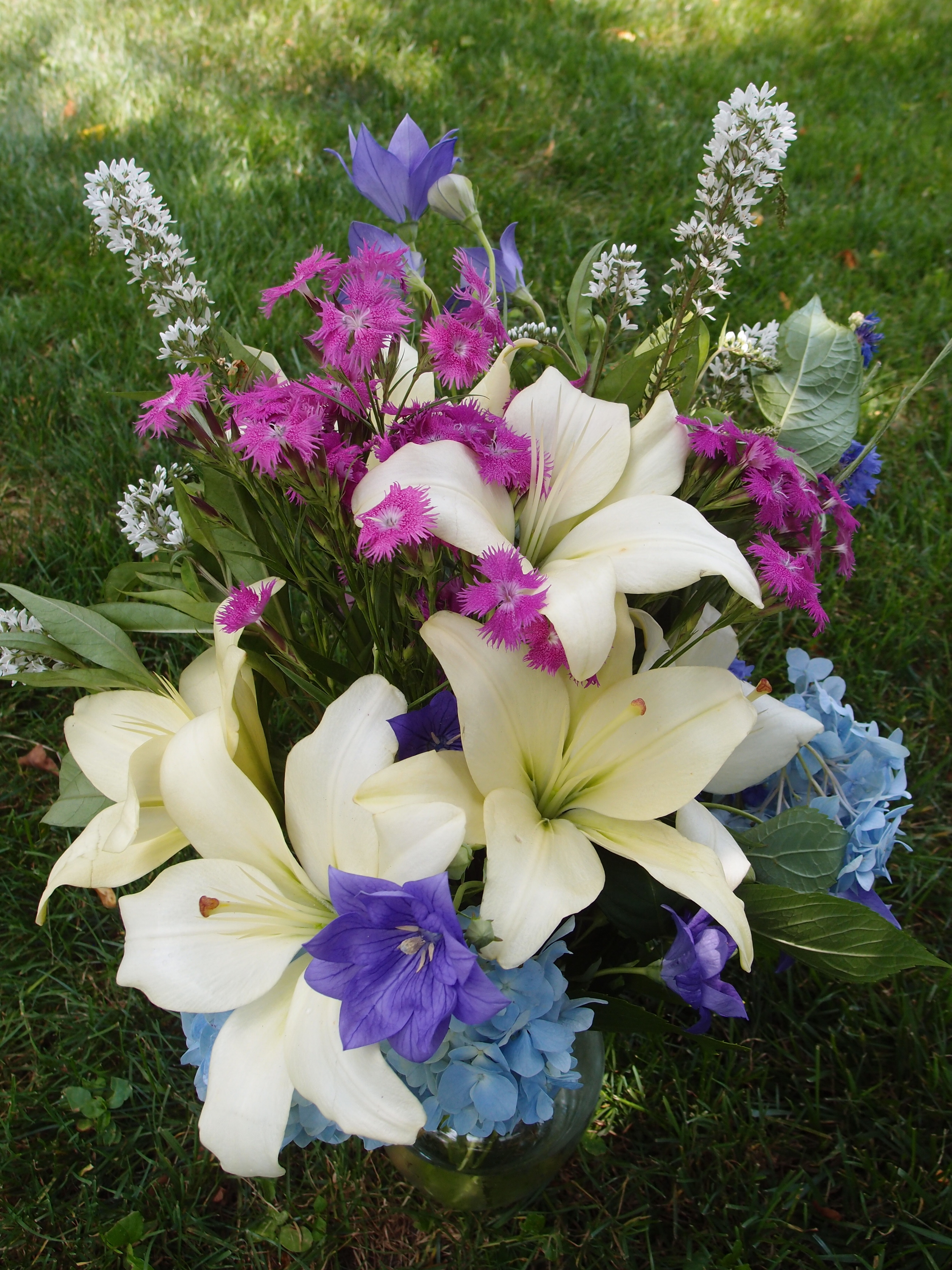 Lilies and other June flowers at Butternut Gardens