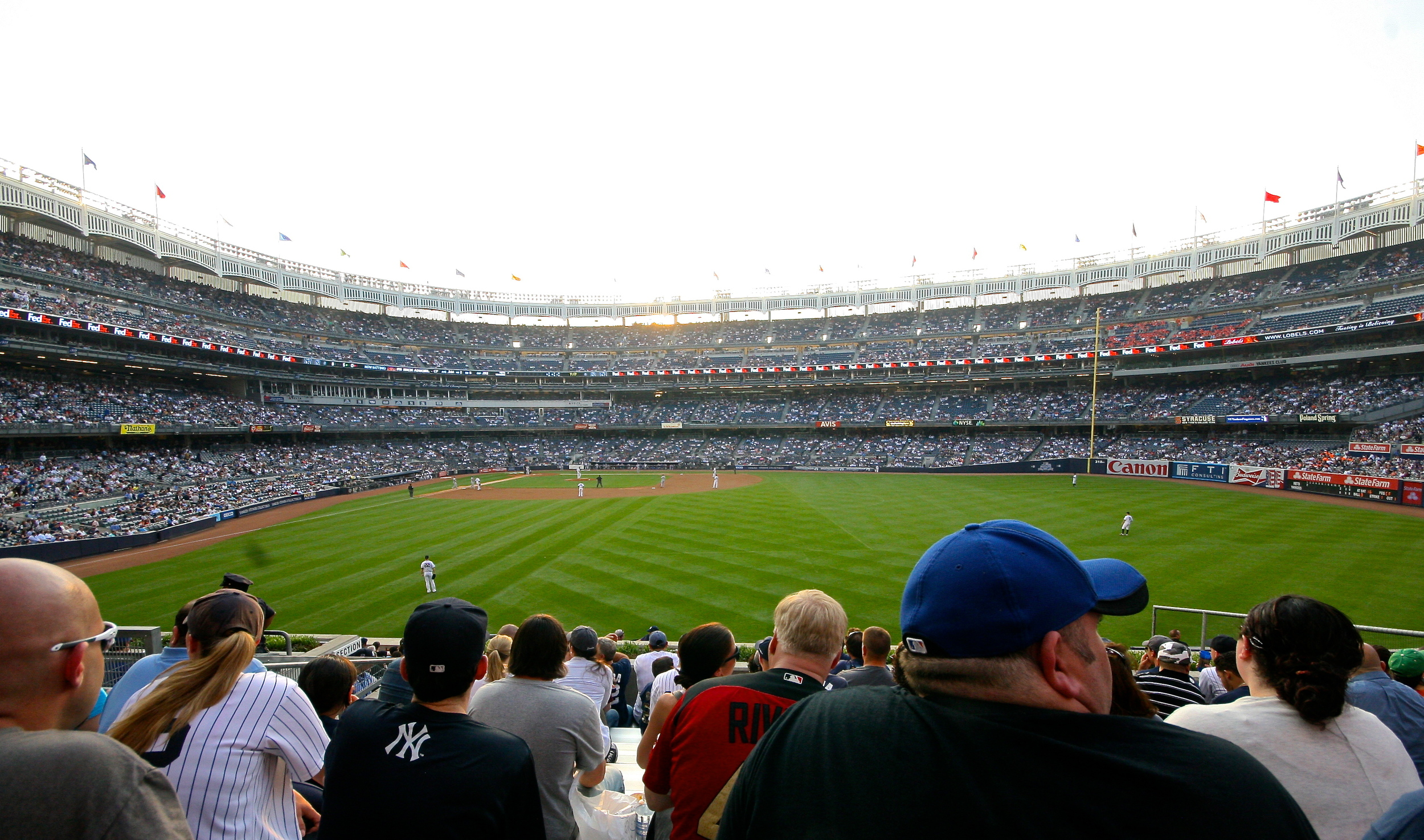 View from the bleacher creatures