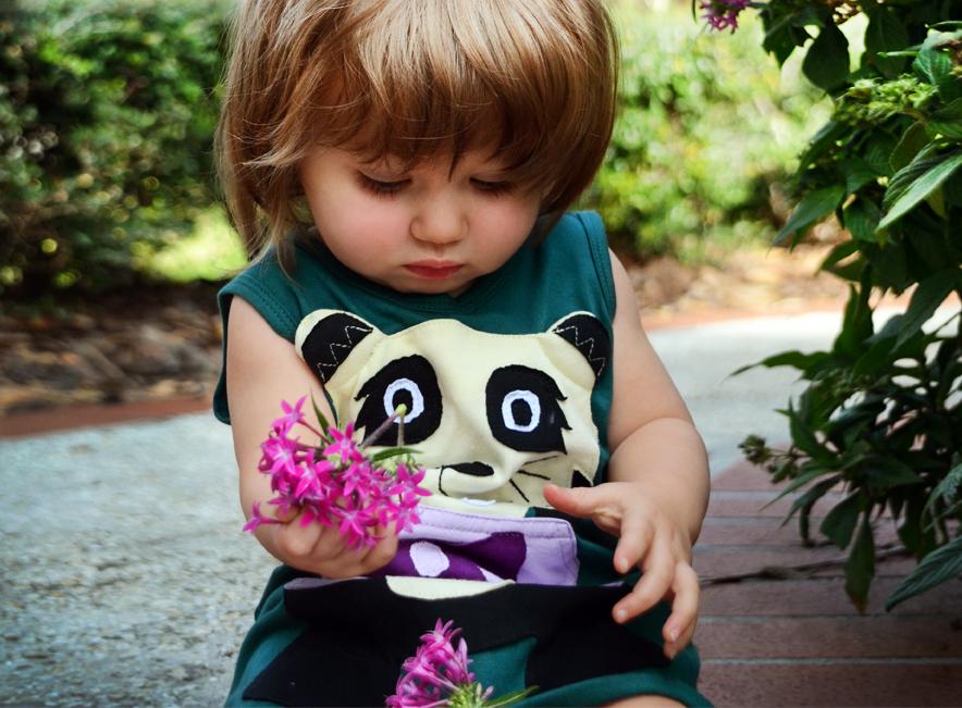 Panda Cropped.jpg