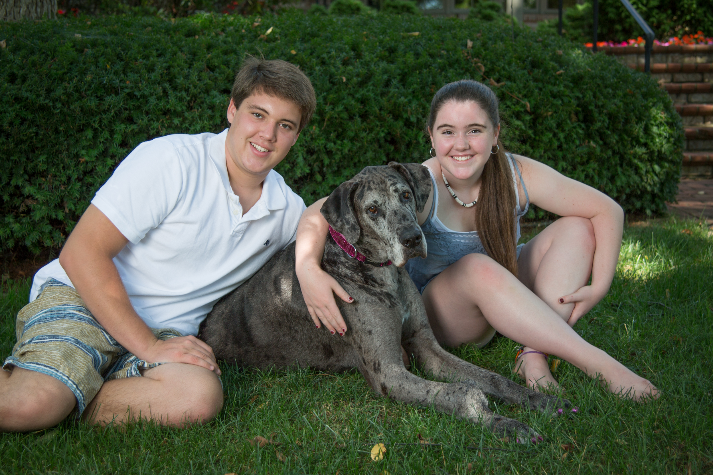 portage-michigan-pet-family-photographer-maggie7.jpg