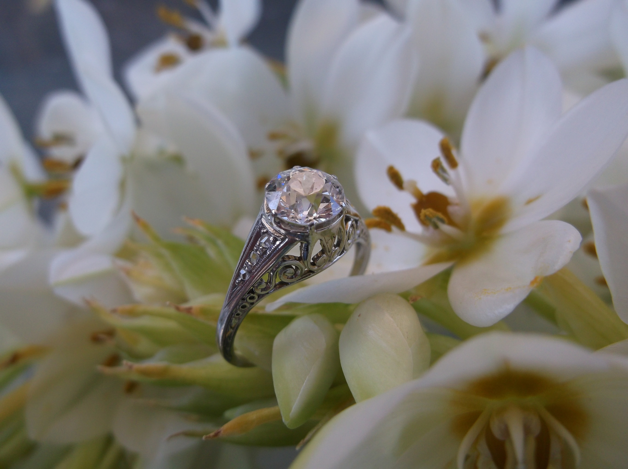 SOLD - Captivating 1920's 1.10 carat Old European cut diamond ring in a beautiful filigree and diamond detail mounting.