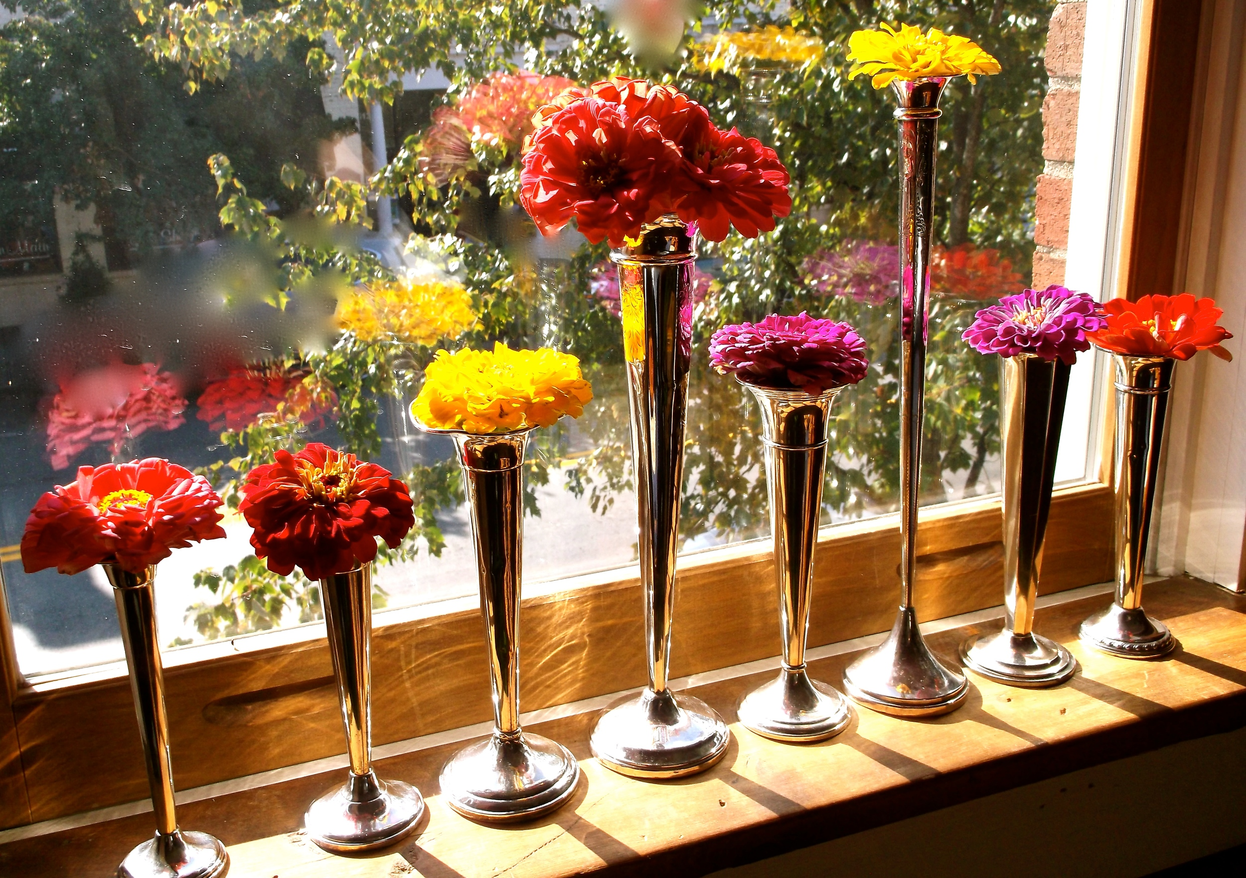 An assortment of sterling bud vases filled with fresh zinnias from the Franklin Farmers Market!