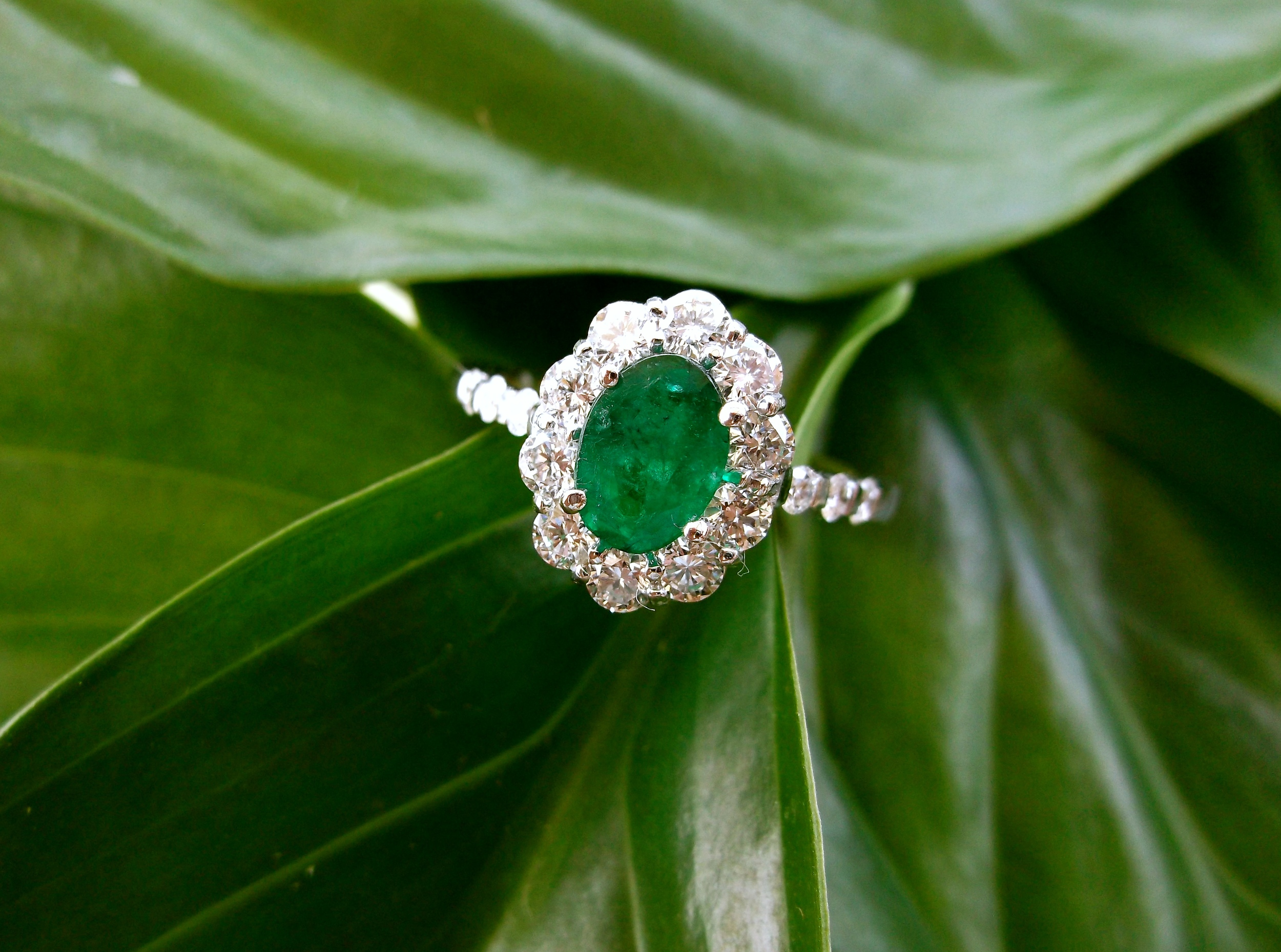 SOLD - Gorgeous emerald and diamond ring set in white gold with a 0.65 carat emerald in the center surrounded by 0.71 carats total weight in diamonds.