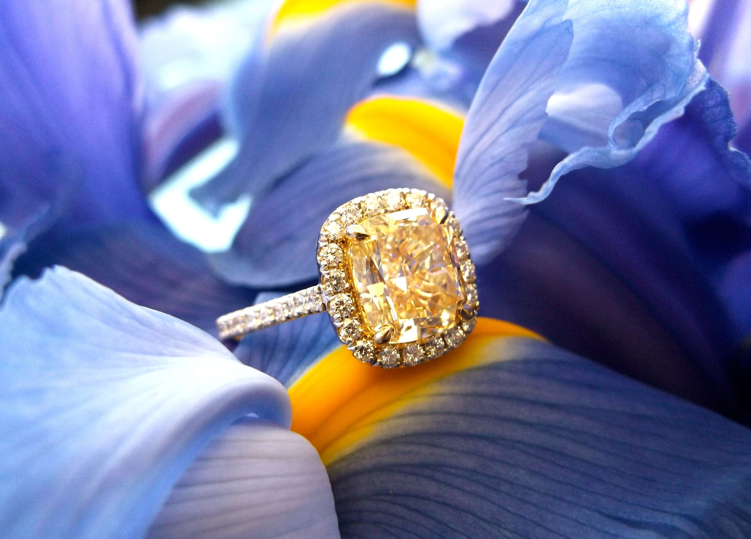 SOLD - Vibrant 2.70 carat fancy yellow diamond set in a dainty diamond halo in 18K white gold.