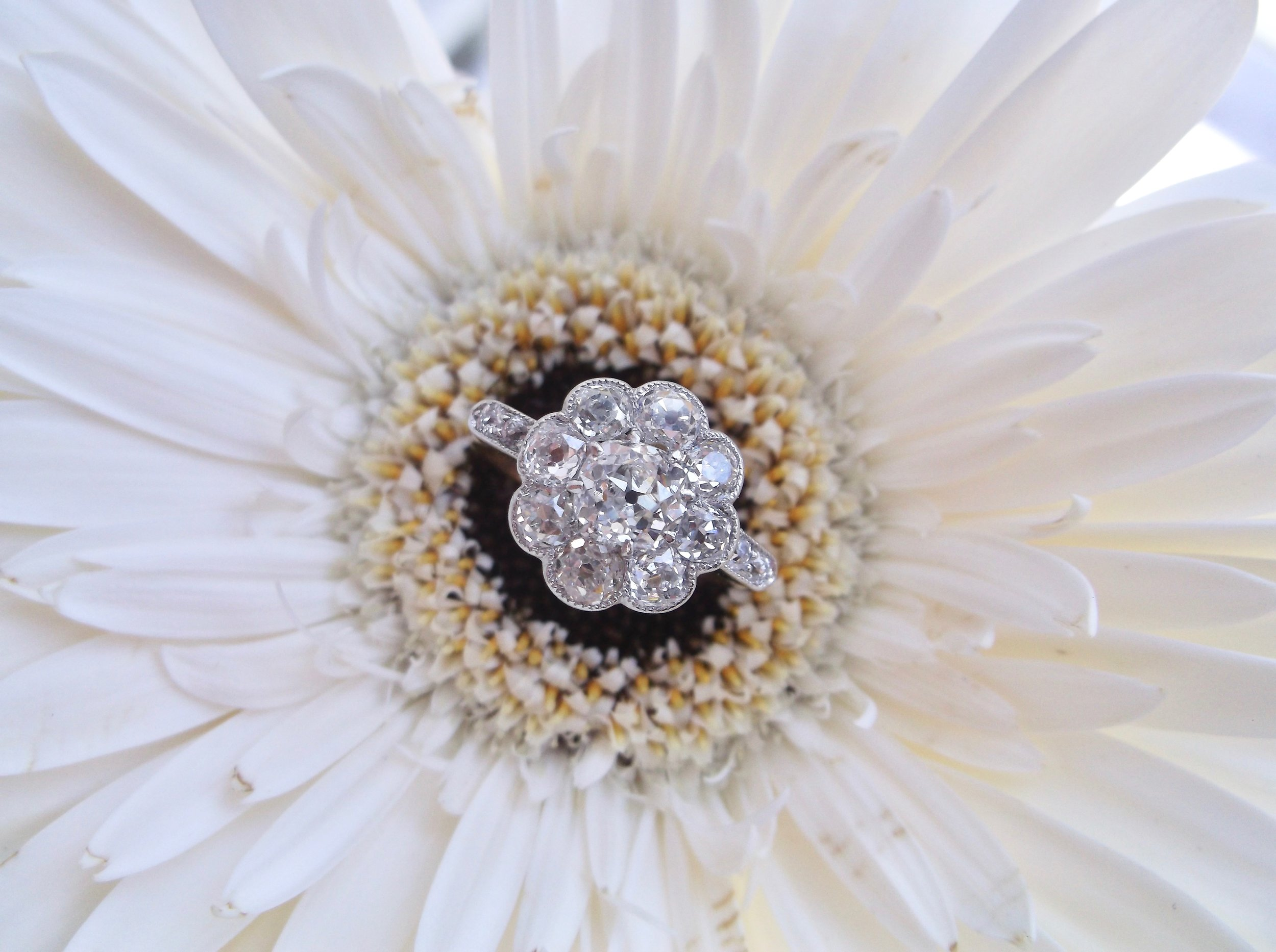 It may be a rainy day in Franklin, but that only brings about beautiful spring flowers! Including this gorgeous, floral inspired,  turn of the century Old Mine cut diamond cluster ring in platinum topped gold! Shop this beauty  HERE