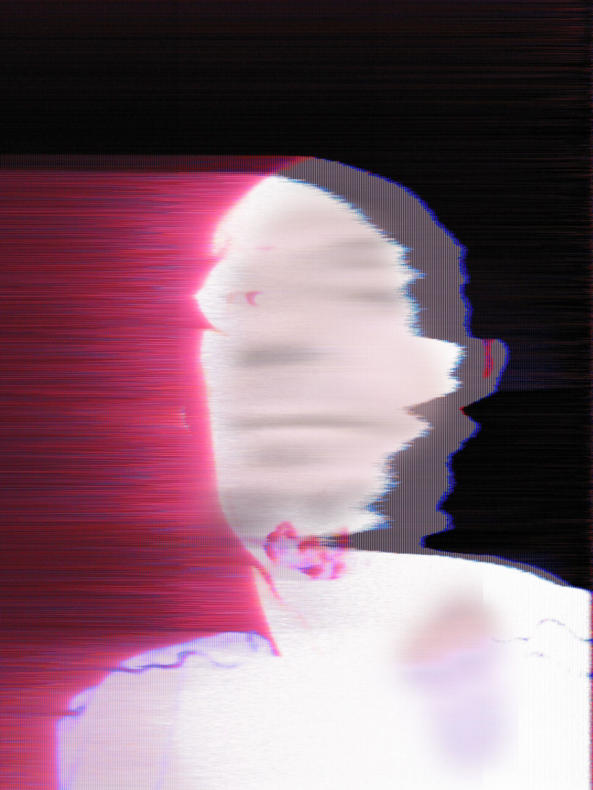 Glitch self-portrait 2