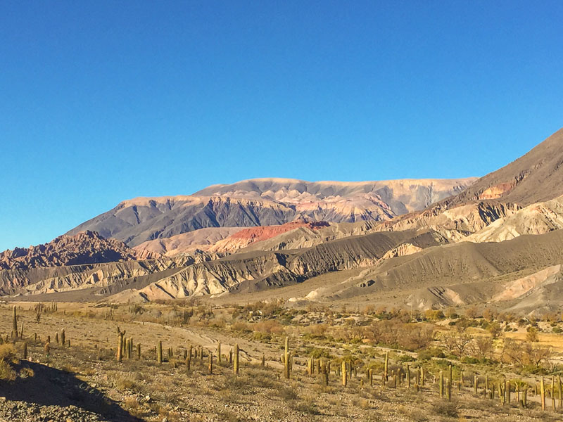 landscape_salta_region_argentina_5.jpg