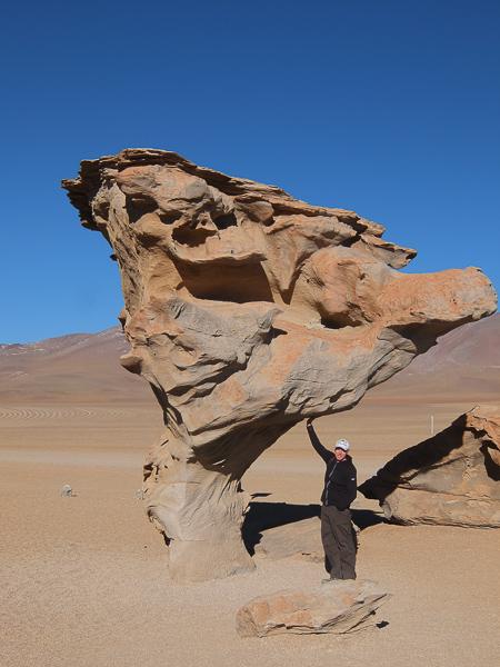 rock_tree_salt_flats_bolivia.jpg