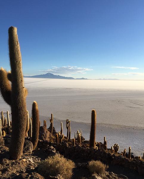 isla_incahuas_salt_flats_tour_bolivia.jpg