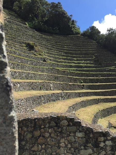 winay_wayna_terraces_inca_ruins.jpg