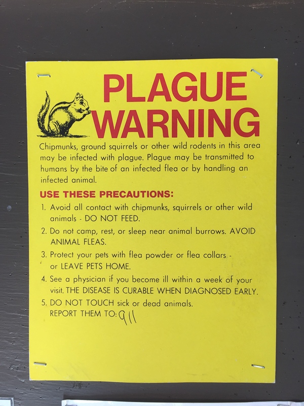 chipmunk_plague_sign.jpg