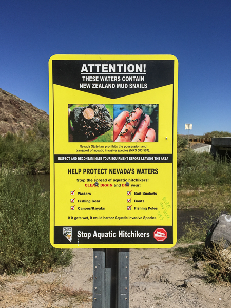 new_zealand_mud_snails_warning_sign.jpg