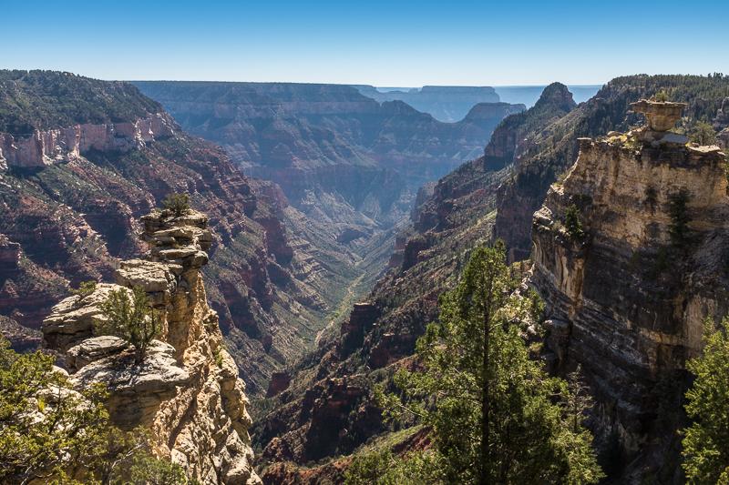 canyon_view_north_rim_grand_canyon_national_park.jpg
