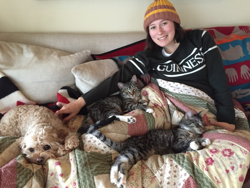 snuggle_time_with_cats_and_dog_portland.jpg