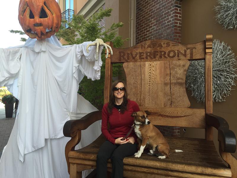 giant_chair_halloween_pumpkin_napa.jpg