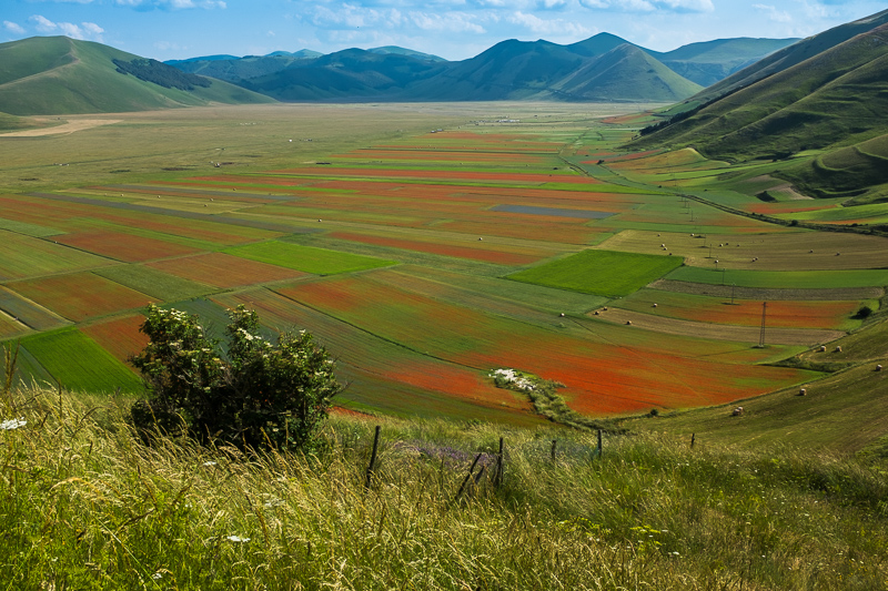 the_blues_and_reds_of_the_valley_below_castelluccio.jpg
