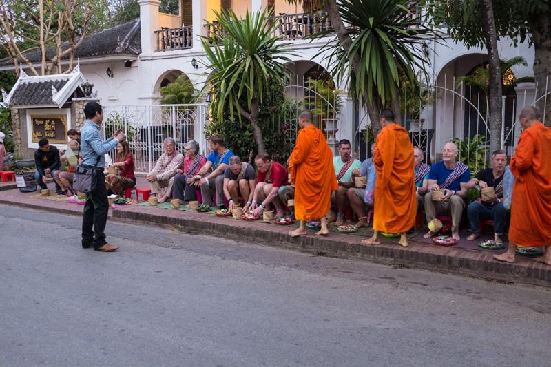 european_tourists_line_the_street_alms_giving_cermony_luang_prabang.jpg