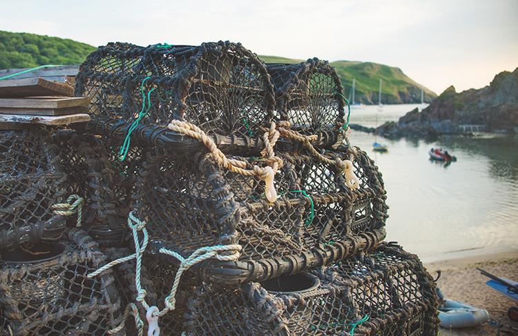 beach-crab-pots.jpg