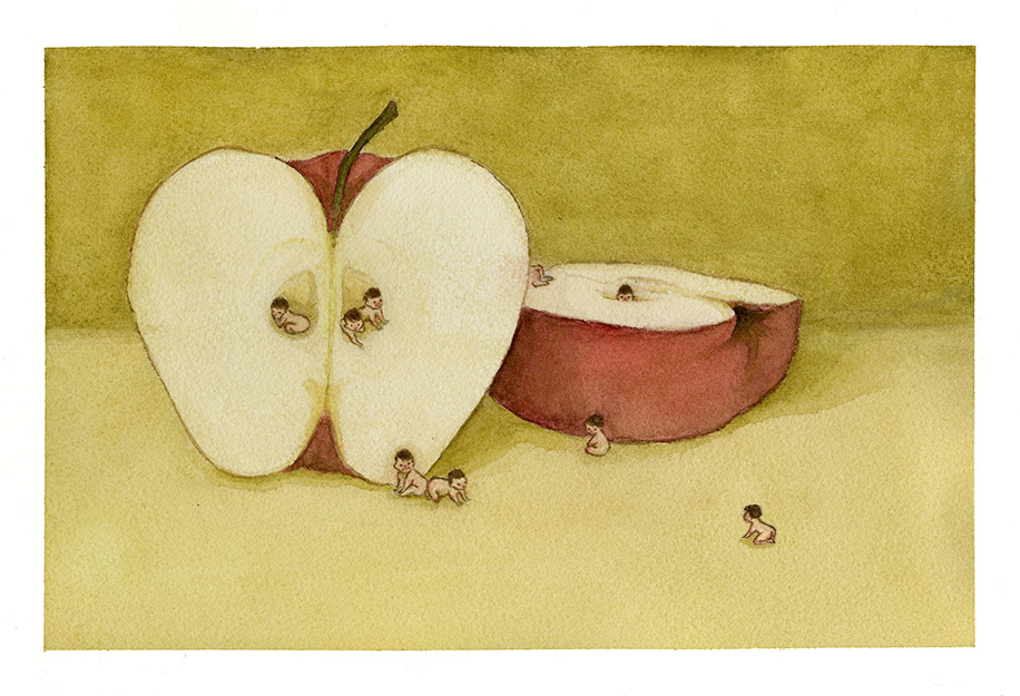 Old Wives' Tales series, Apple Babies, Watercolour  The tale: cut an apple in half and the number of seeds inside is how many children you'll have.