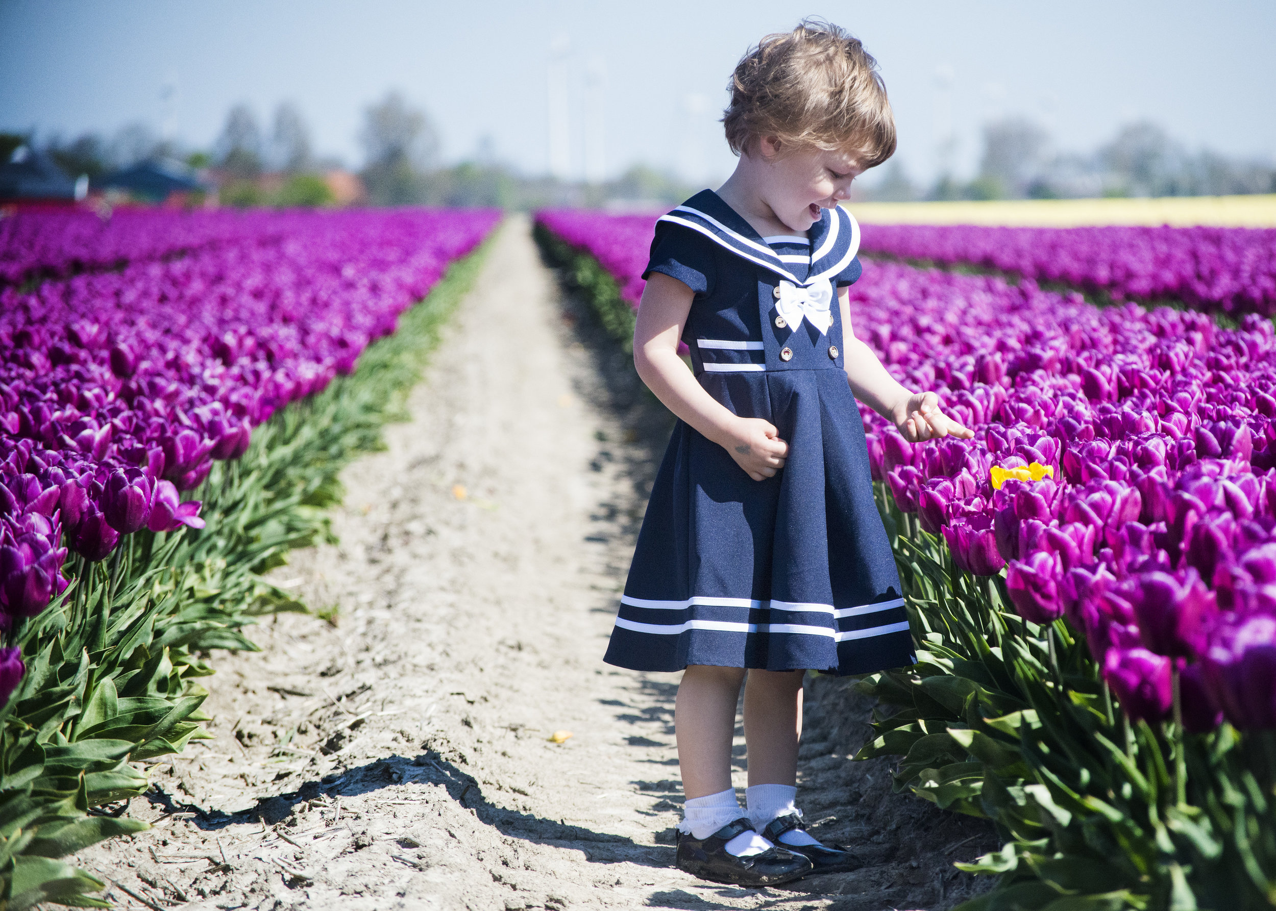 tulips_2484.jpg