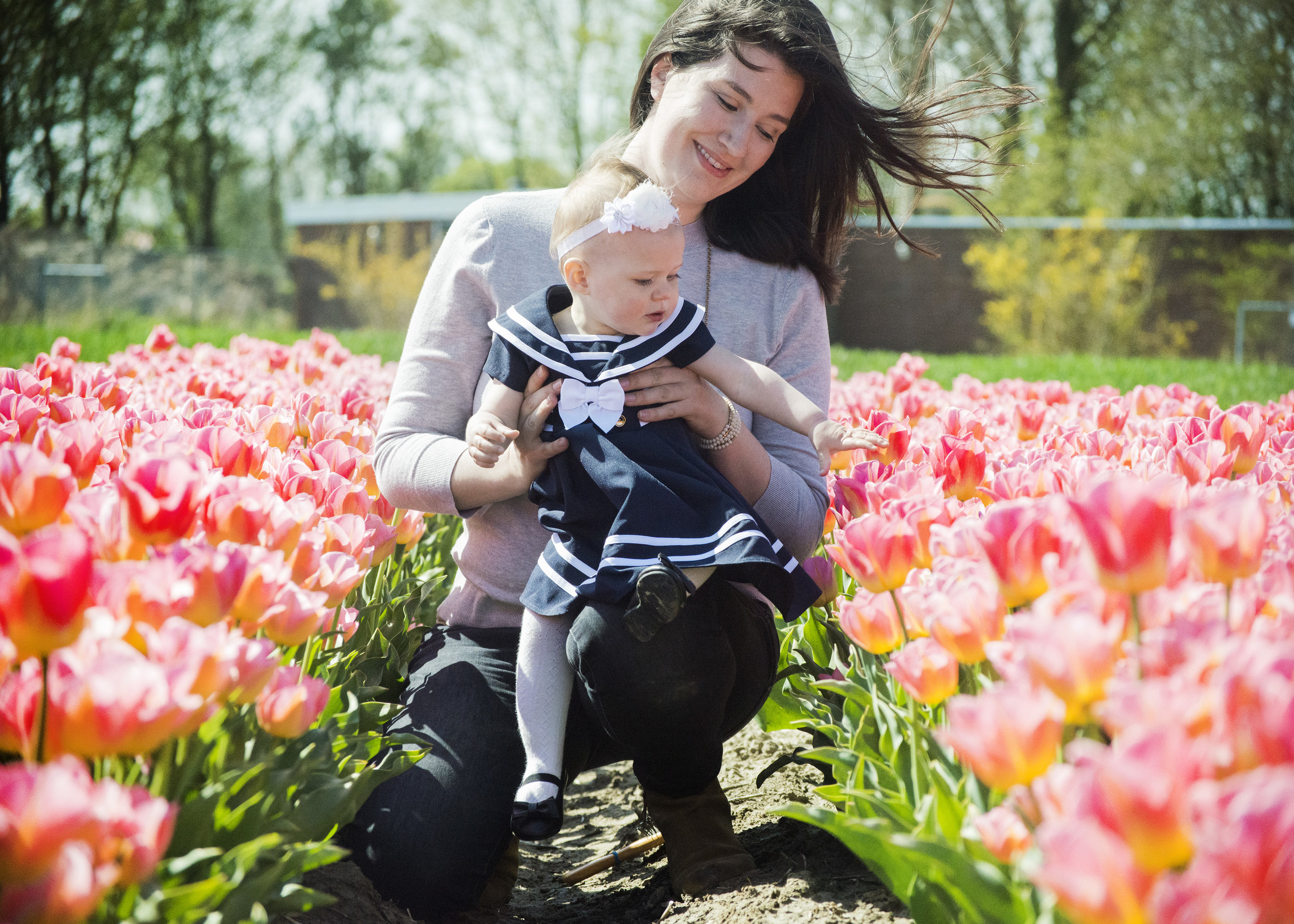 tulips_2507.jpg