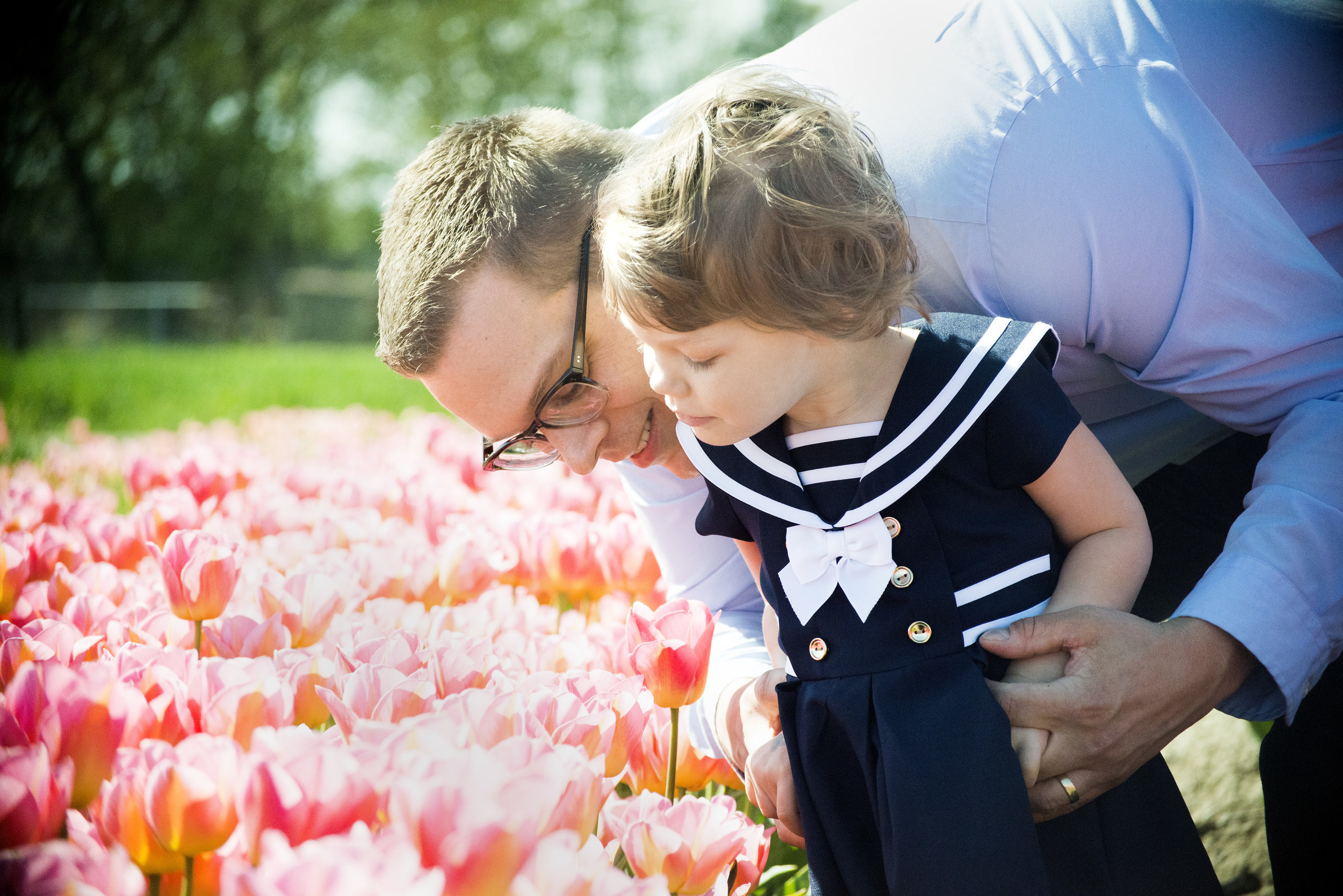 tulips_2520.jpg