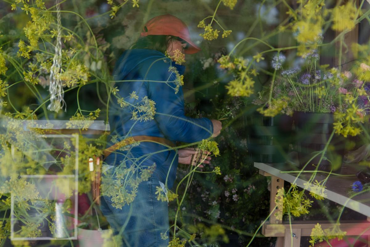 Jo Tennant 01 Immersed in flowers.jpg