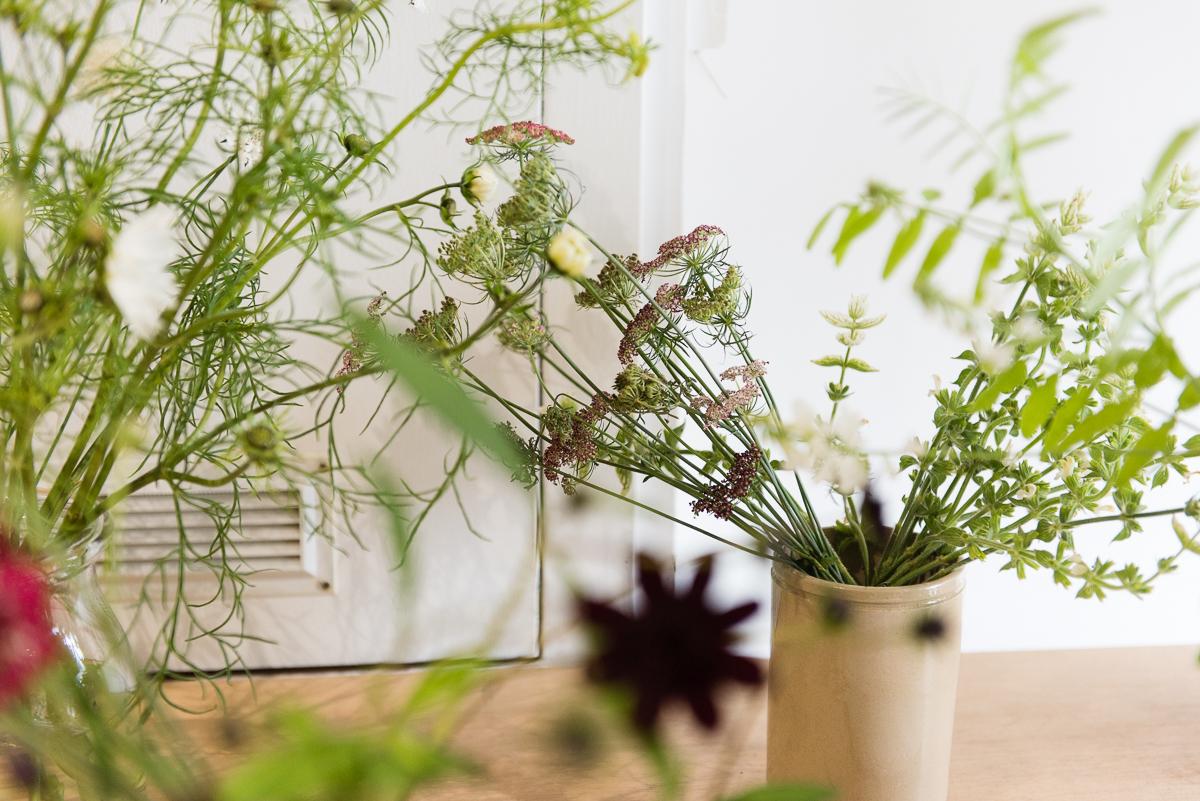 botanicals_jotennant 03001-3.jpg