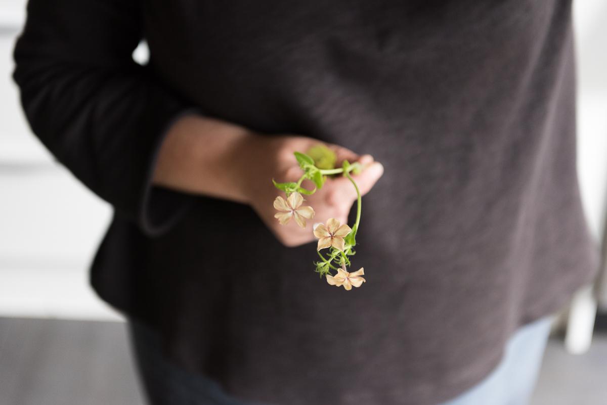 botanicals_jotennant 03001-2.jpg