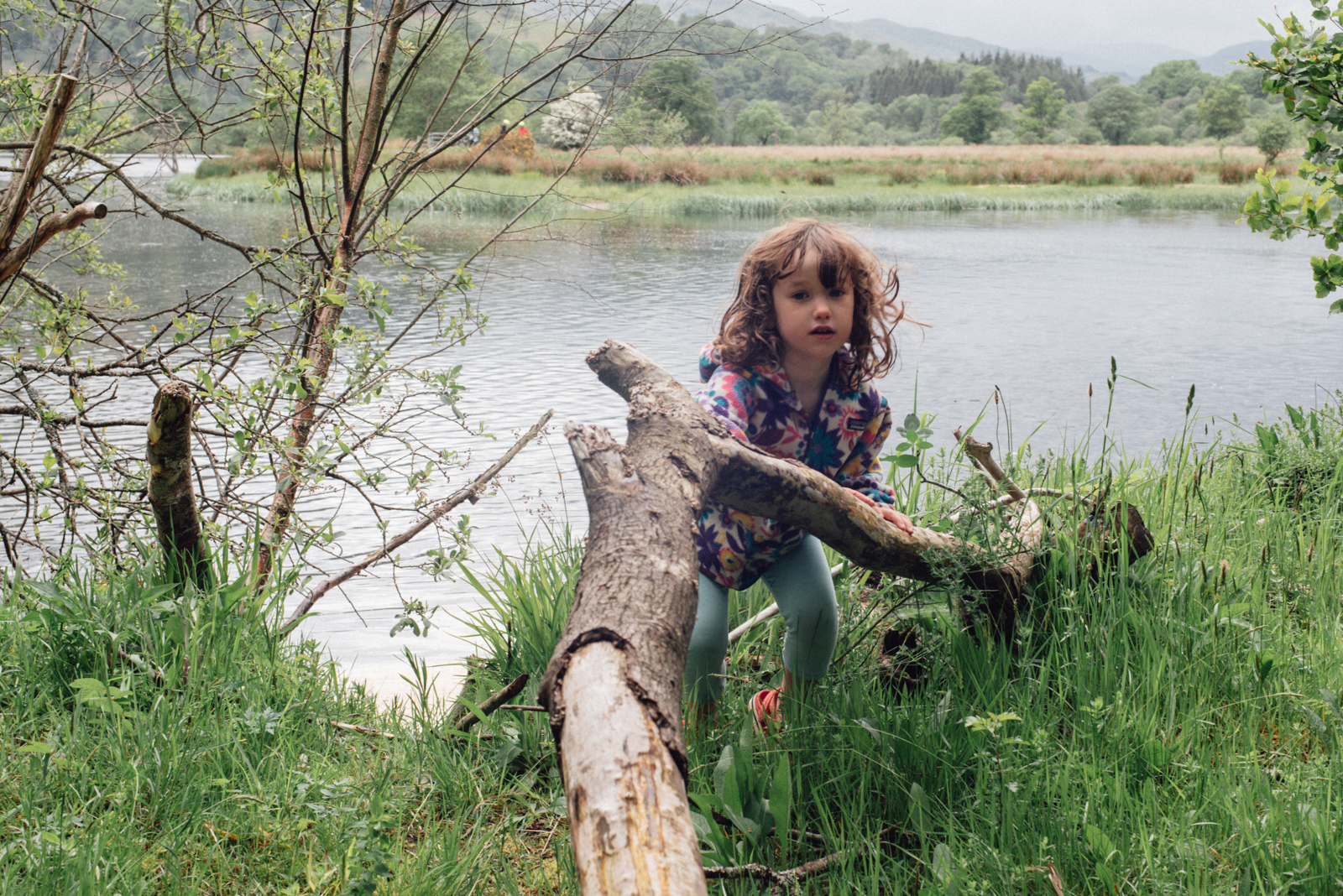 (Writing this blog has been a great prompt to me to order another photobook of a magic weekend we spent on Loch Tay in June - canoeing and adventures with the kids to an uninhabited island with beavers … and hot chocolate… I hope you enjoyed seeing my family snaps too)…