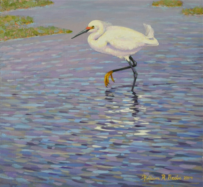 Snowy Egret Slow Walking  (DETAIL SHOT), by William R. Beebe, 10 x 12, oil on board, AVAILABLE