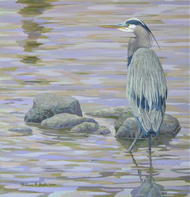 Two Rivers Heron  (DETAIL SHOT), by William R. Beebe, 14 x 16, oil on board, AVAILABLE