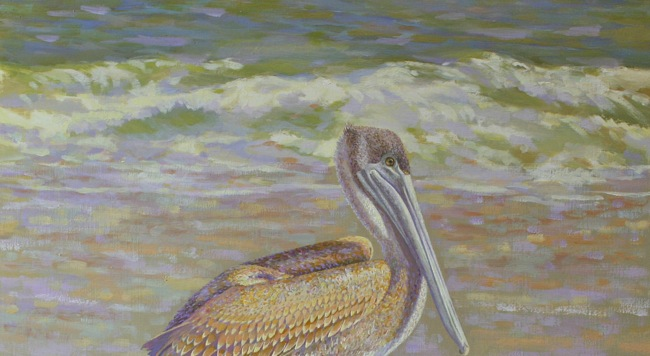 Sunlit Pelican Basking in the Glow  (DETAIL SHOT), by William R. Beebe, 14 x 16, oil on board, SOLD