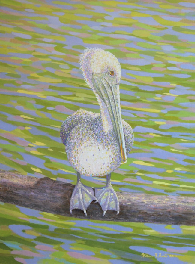 Pelican Perfectly Perched    by William R. Beebe, 16 x 12, oil on board, SOLD