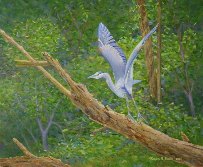 Taking Flight , by William R. Beebe, 10 x 12, oil on board, $950