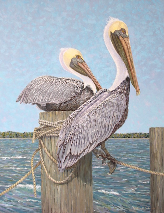 Feathered Friends  by William R. Beebe, 28 x 22, oil on canvas, $5500