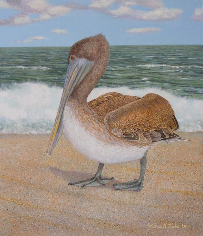 Taking a Stance  by William R. Beebe, 14 x 12, Oil on board, $2300